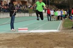 salto4